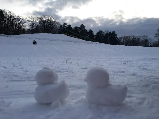 雪遊び アヒル