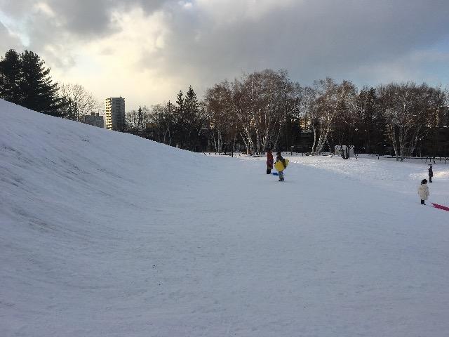 冬 月寒公園 ソリ